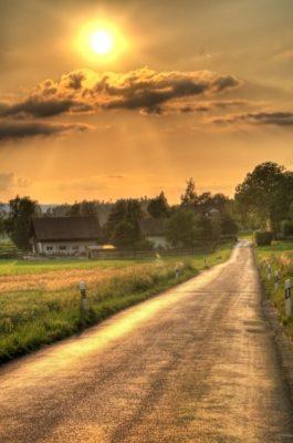 Imágenes De Amaneceres En El Campo camino