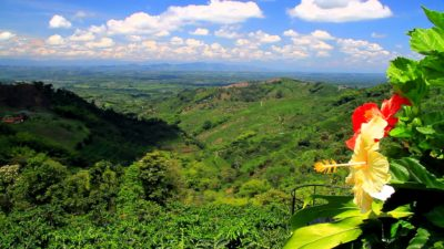 Imágenes De Paisajes De Colombia campo