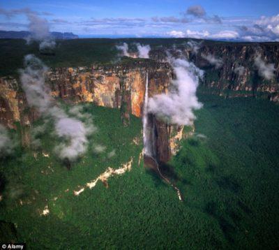 Imágenes De Paisajes De La Naturaleza selva