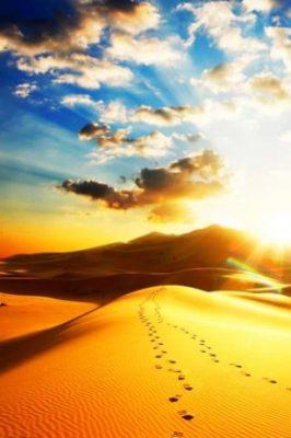 imagenes de paisajes para celular desierto