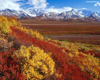 imagenes de paisajes sorprendentes desierto