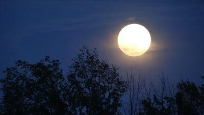 imagenes fases de la luna llena