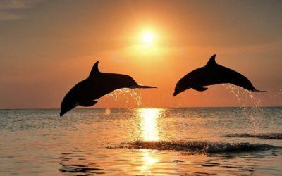 paisajes hermosos de amor mar