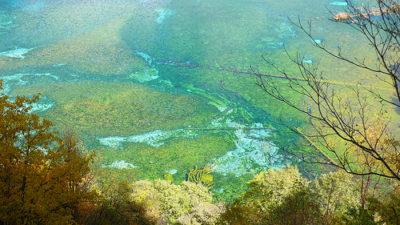 paisajes mas hermosos del mundo selva