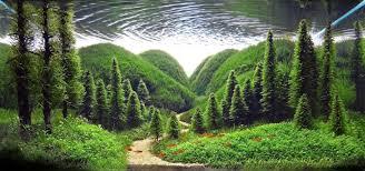 paisajes naturales hermosos para portada