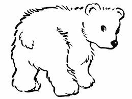 dibujos de osos para colorear tiernos