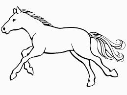 imagenes de animales domesticos caballo