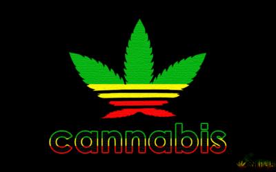imagenes de marihuanas chidas  escudos