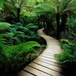 imagenes de paisajes bellos naturales