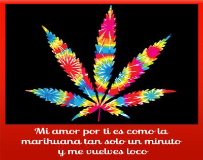 imagenes-de-marihuana-con-frases-de-amor
