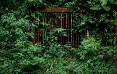 imagenes-de-la-penitenciaria-de-gorgona