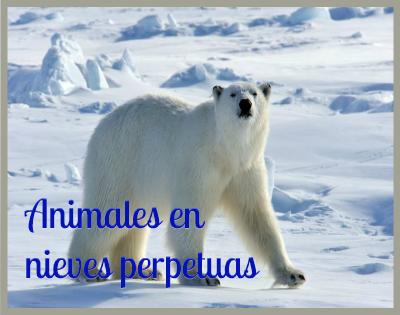 paisajes con nieves perpetuas y animales