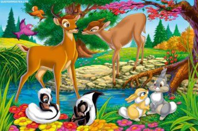 paisajes-hermosos-de-animales