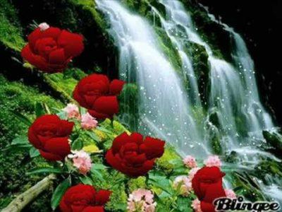 cascadas-con-flores-hermosas