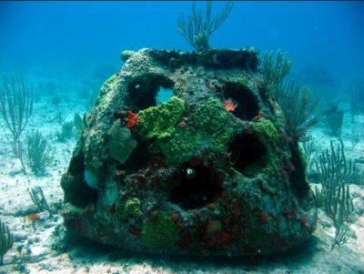 imagenes-de-arrecifes-de-coral-artificiales