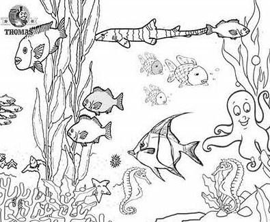 imagenes-de-arrecifes-de-coral-para-colorear