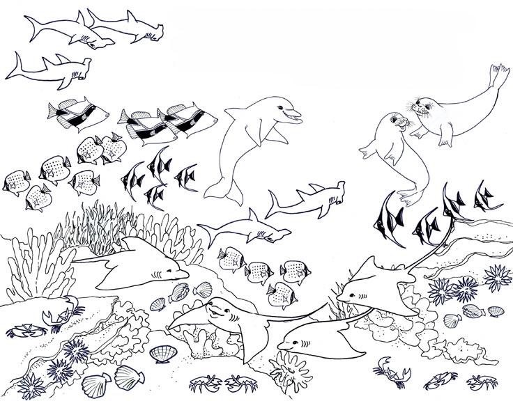 Dibujo De Paisaje Marino Para Colorear: Dibujos De Arrecifes De Coral Para Colorear