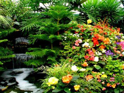 imagenes-de-paisajes-hermosos-con-cascadas-y-flores-gratis