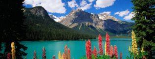 paisajes de canada en primavera