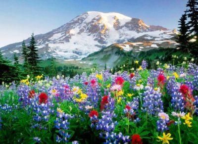Fotos Paisajes Espectaculares primavera
