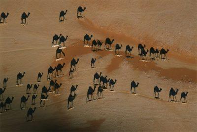 fotos de paisajes hermosos del mundo gratis africa
