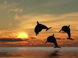 fotos de puestas de sol en el mar paisajes