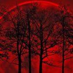 Hermosas Imágenes De La Luna Sangrienta Para Descargar