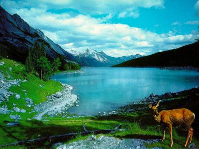 Imágenes De Paisajes De La Naturaleza lago