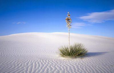Imágenes De Paisajes Gratis desierto