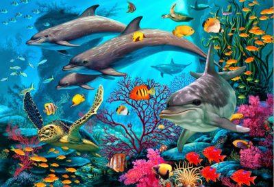 imagenes de paisajes preciosos arrecife