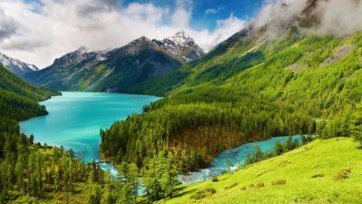 imagenes de paraisos naturales bosque