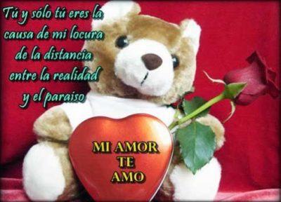 dibujos de ositos tiernos con rosas de amor