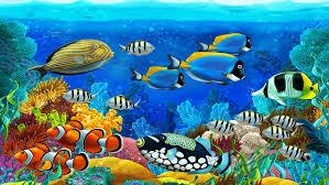 fotos de animales marinos bonitos