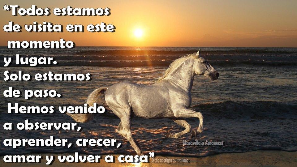 Imagenes De Atardeceres En El Mar Con Frases Romanticas De Amor