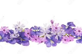 imagenes de flores moradas para portada