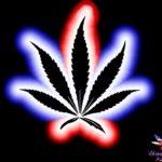 Imágenes De Marihuanas Chidas Para Jóvenes Rebeldes