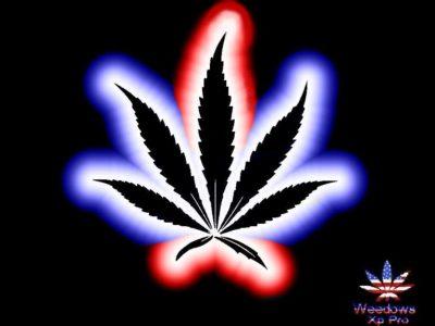 imagenes de marihuanas chidas de colores