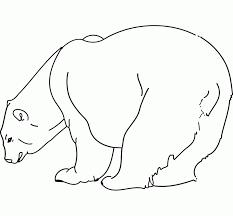 imagenes de osos para colorear faciles