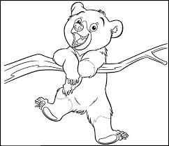 imagenes de osos para colorear