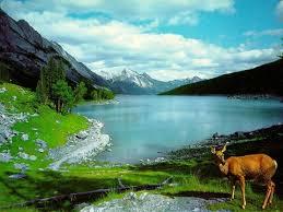 imagenes hermosas de paisajes naturales