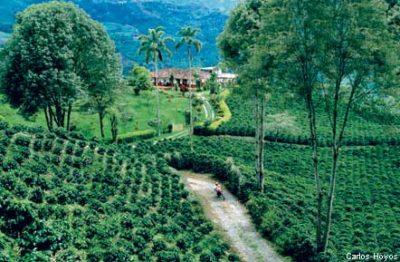 paisajes culturales del eje cafetero colombia