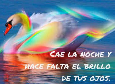paisajes romanticos con cisnes de colores