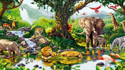imagenes-de-paisajes-hermosos-con-animales