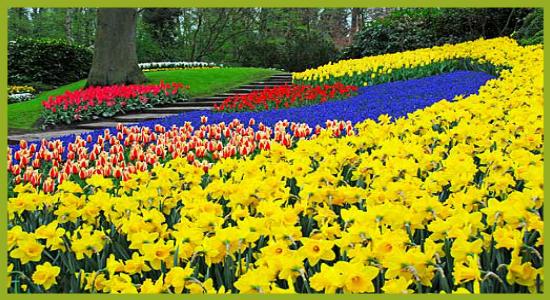 Im genes de paisajes hermosos de primavera para fondos for Fondo de pantalla primavera