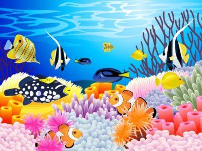 dibujos-de-corales-animados
