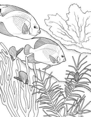 dibujos-de-corales-para-colorear-e-imprimir