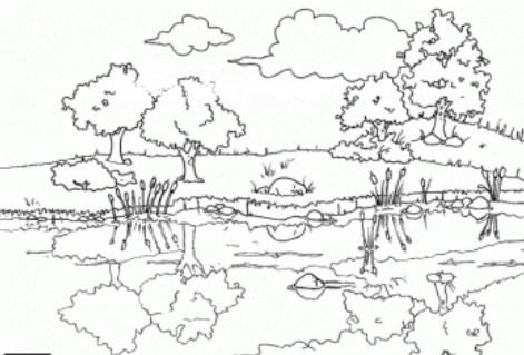 Hermosos Dibujos De La Sierra Para