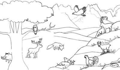 dibujos-de-la-sierra-peruana-para-colorear