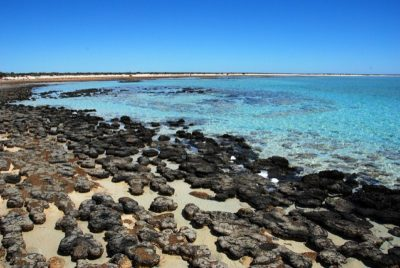 paisajes-australianos-rocas-fosiles