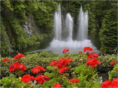 paisajes-hermosos-con-cascadas-y-flores